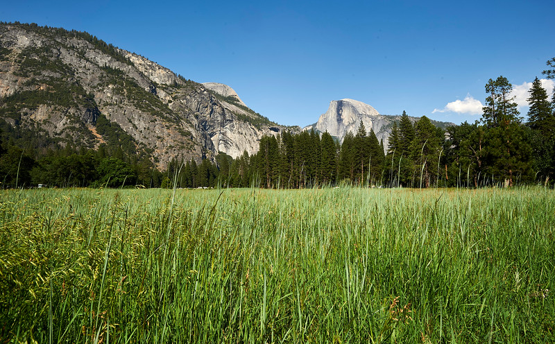 Half Dome, as seen from Yosemite Valley.