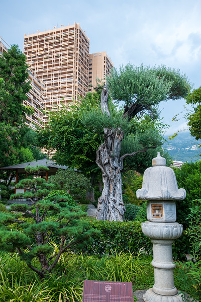The Japanese Garden in Monaco.