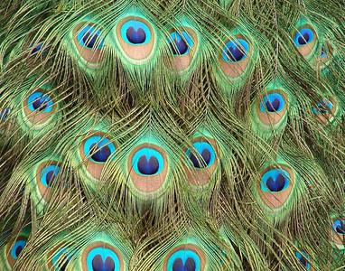 Mammino - Blue Eyes