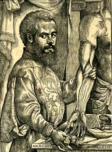 Andreas Vesalius (1514-1564)<br /> <br /> Flemish anatomist, physician and author of one of the most influential books on human anatomy, De humani corporis fabrica. Because of this book and his many scientific findings in the human body, Vesalius is often referred to as the founder of modern human anatomy.