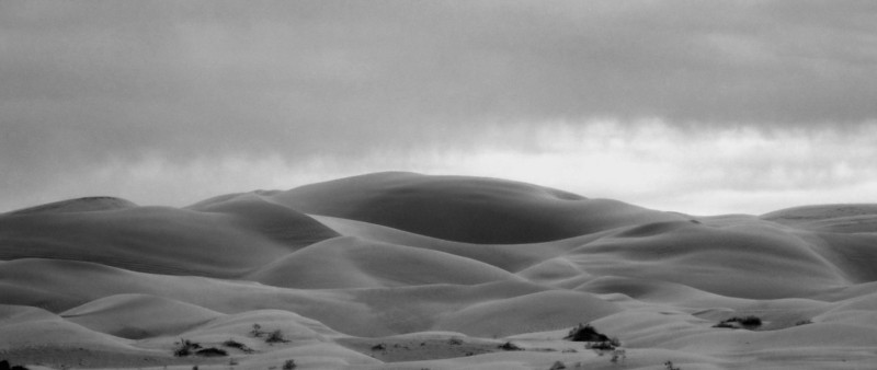 Sand Dunes Arizona/California