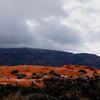 Coral Pink Sand dunes Southern Utah