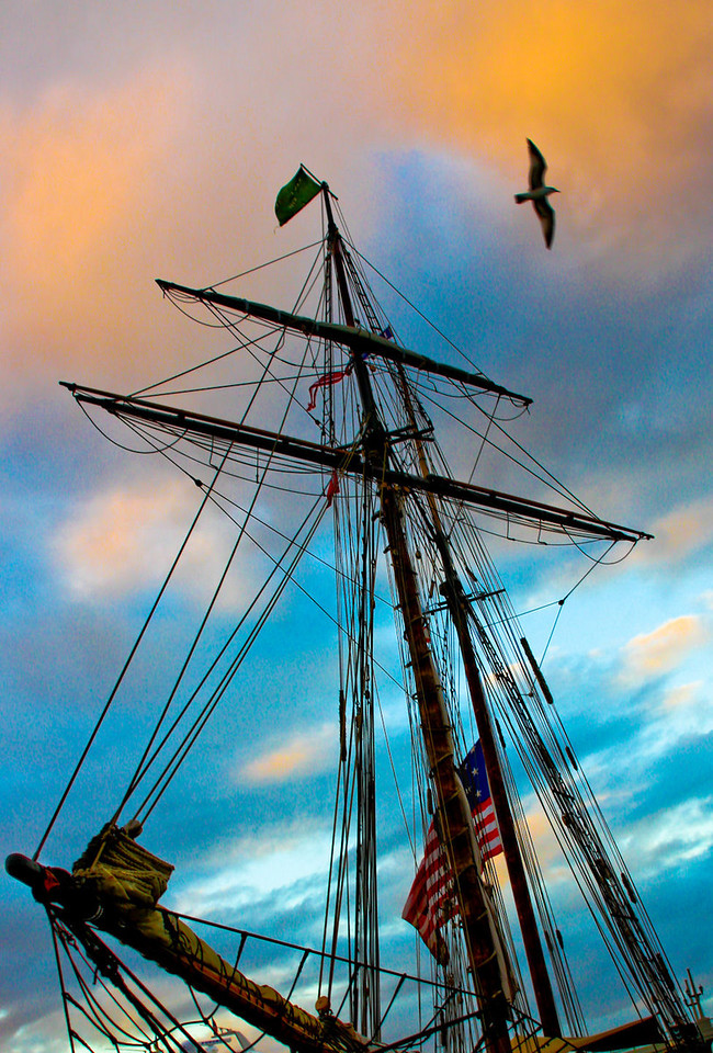 Nov, 29<br /> Went down to the marina tonight with the Saint Augustine Camera Club to practice/learn taking dusk/night shots. One of the 1812 replica ships was in port. <br /> <br /> I have been off the gym for a week due to the fact that it was Thanksgiving week and they held no classes at the YMCA -- redoing the floors. But I'm headed back tomorrow thankfully. I need to. (not to be confused with wanting to.)