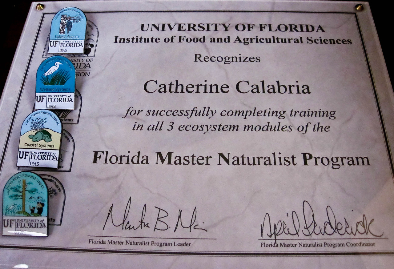 "Sept. 22 <br /> <br /> I am now a ""Florida Master Naturalist"" and have the plaque and pins to prove it. Coastal, Wetland and Upland systems studied and explored. My mother and I finished our 120 hours of classwork and field learning and graduated today! We Done Did Good!"