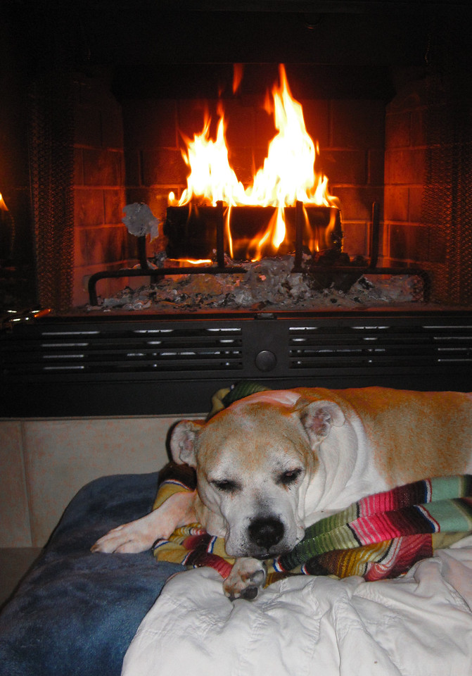 Nov. 9 <br /> Sue knows her place in this household. I am not the only fire lover evidently.