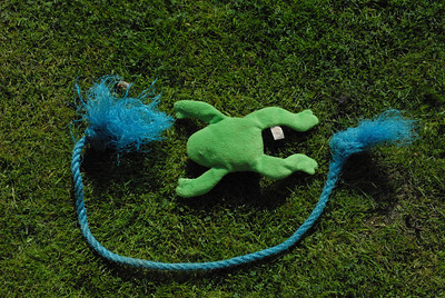 Toy frog and rope.