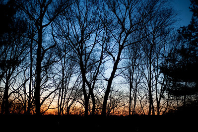 Sunset in my back yard. D700 low light test on Joby tripod.