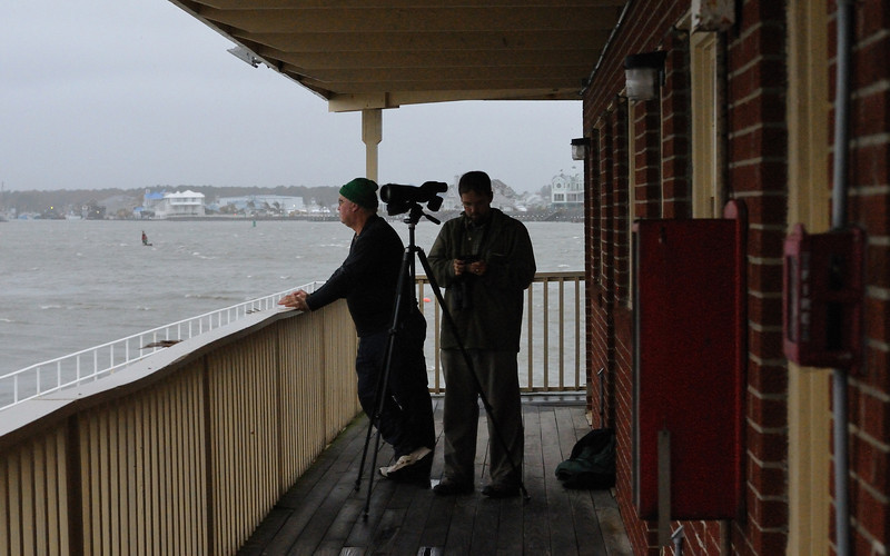 These fellows got a nice dry spot on the balcony of the Oceanic Motel at the inlet....they were looking for unusual birds that would be blown off course by such a weather event.