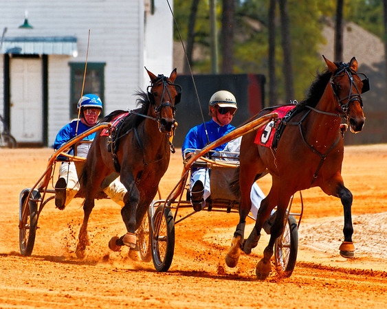 Pinehurst Harness Races 2011