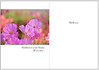 Sold to SunDay Greetings for use as a greeting card