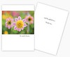 Summer 2018 Printing of SunDay Greeting cards