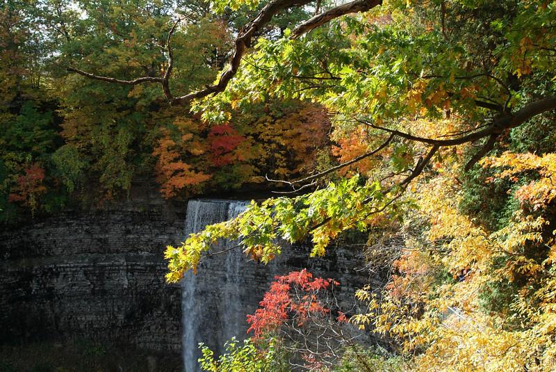 Teys Falls
