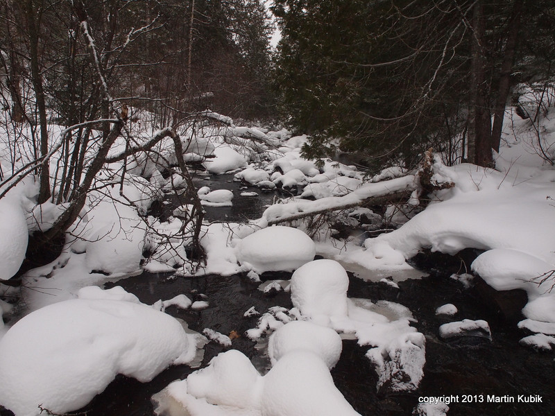 Another shot of a relaxed creek.