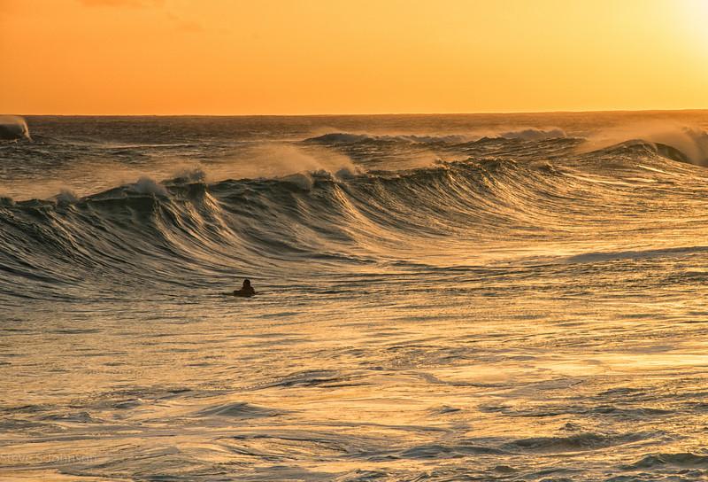 Surf Freedom