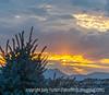 Sunset on the Front Range