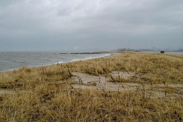 Lordship Beach #1
