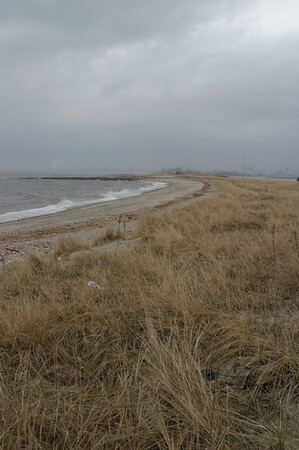 Lordship Beach #6