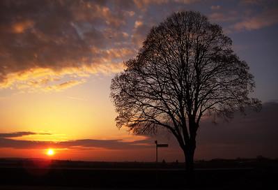 20170216_90km_SunsetKnoblauchsland_3983