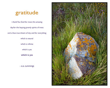 gratitude-01