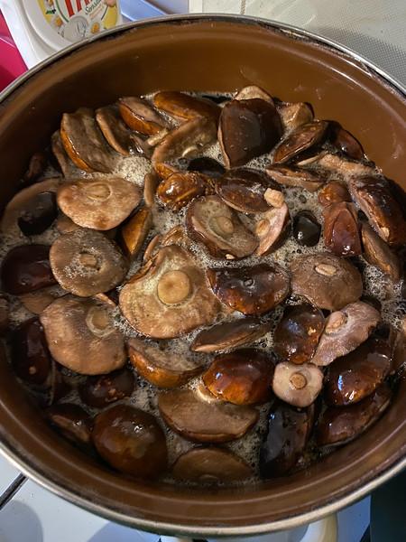 Mushroom Caps