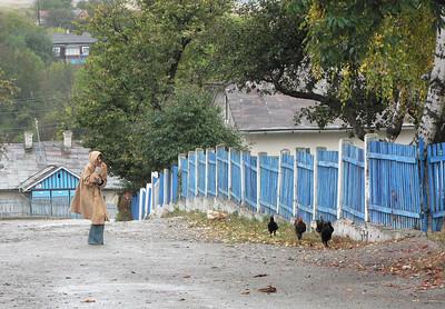 chickens fleeing Rebecca