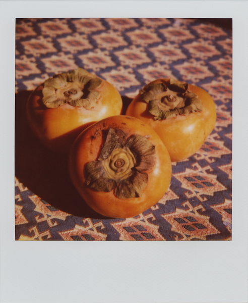 magdaspersimmons