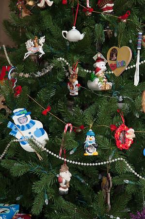 Polichetti Family Christmas 2013