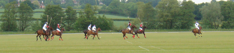 Polo Summer 09