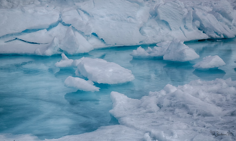 Iceberg Pond