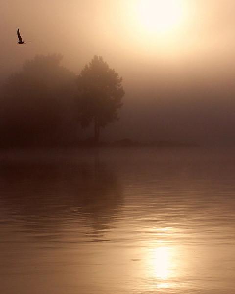 Heather Lemmon - A Peaceful Morning