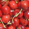 timothy stafford - Cherries At Fisherman Wharf