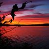 Donna Brown - Sunset At Lake Ontelaunee, Pennsylvania