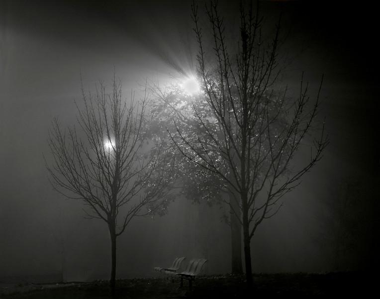 Carlos Valdez - Night Walk City Park