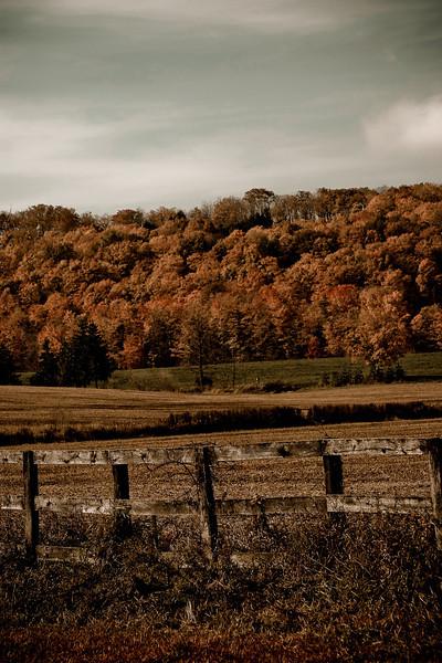 Louis Borsato - Tranquil Countryside- Canada