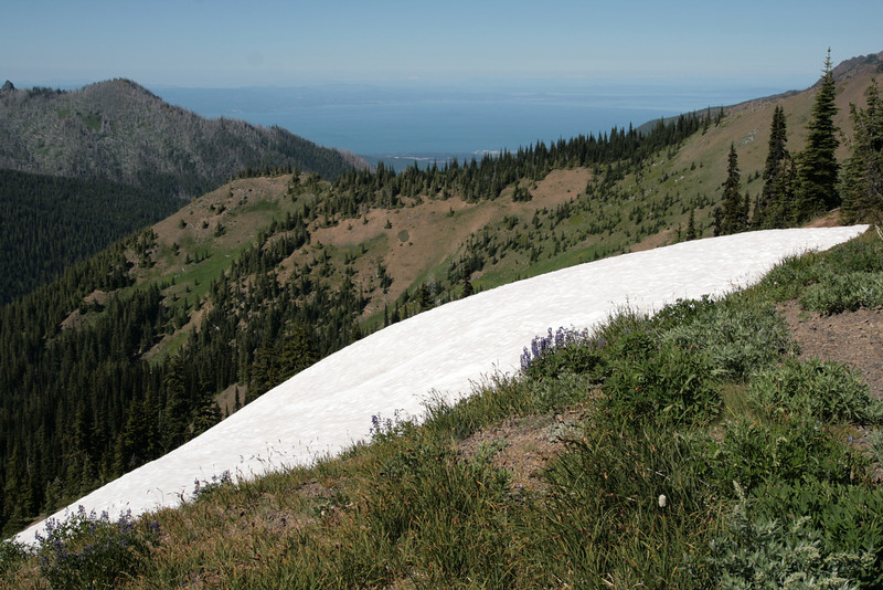 theres still snow up at Hurricane Pass!