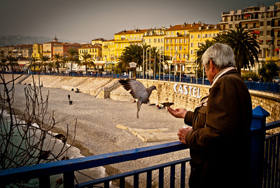 Old man feeding birds on the corniche in Nice, French Riviera
