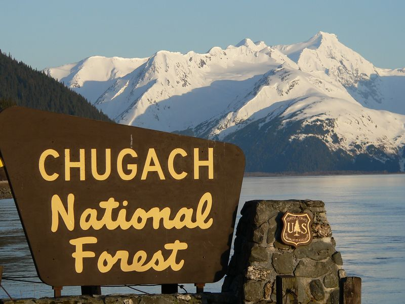 Chugach National Forest is the second largest Forest in the National Forest System and is roughly the same size as the states of Massachusetts and Rhode Island combined; it is also the most northern of National Forests, only 500 miles south of the Arctic Circle. One third of the Chugach is composed of rocks and moving ice.