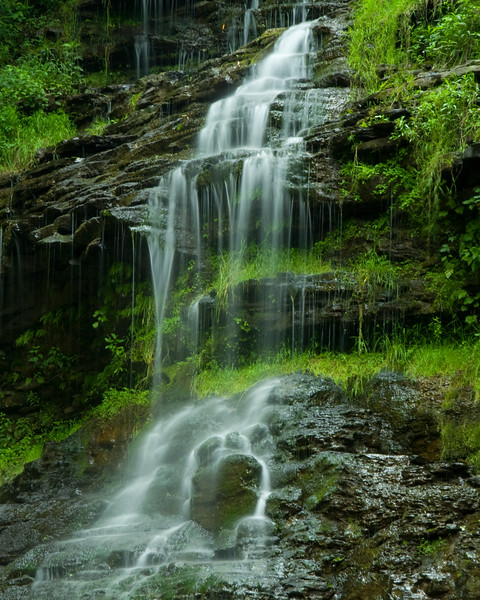 Cathedral Falls near Gauley Bridge WV.
