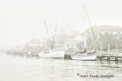 Fog rolled in right after sunrise at Shem Creek - Mt. Pleasant, South Carolina