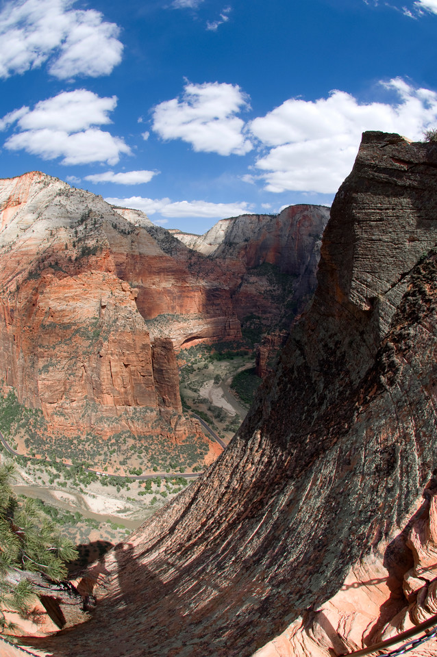 View From Angel Landing: Zion NP