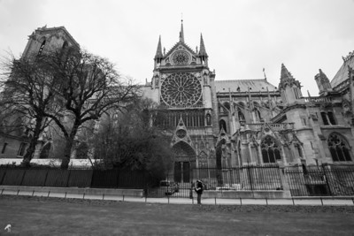 Notre Dame, Paris France