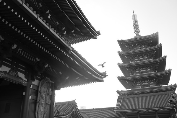 """the """"old town"""" part of Tokyo called Asakusa (http://en.wikipedia.org/wiki/Asakusa) to see some temples and stuff.."""