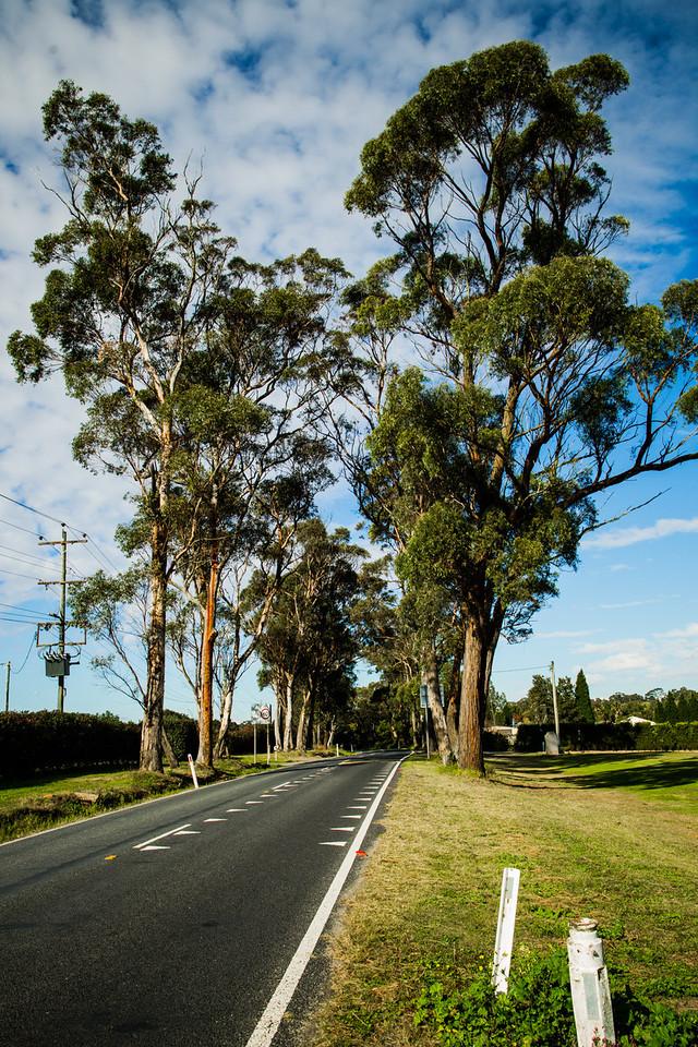 Maroota, Sydney, NSW, Australia
