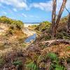 (1764) Squeaky Beach, Victoria, Australia