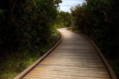 (Image#3395) Queenscliff, Victoria, Australia