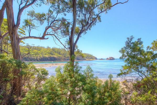 (1581) Pirates Bay, Tasmania, Australia