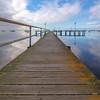 (2336) Griffin Gully, Victoria, Australia
