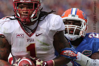 Kelvin Benjamin crossing the goal with a smile and hapless Gator in tow...