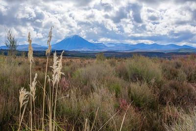 (Image#3412) Tongariro NP, New Zealand