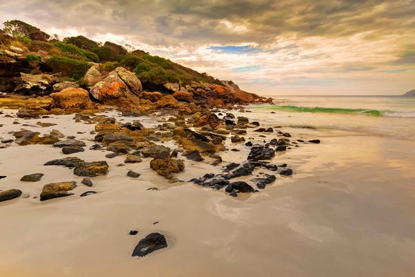 (2388) Boat Harbour Beach, Tasmanai, Australia
